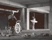 black swan wheelchair babe balerina envy