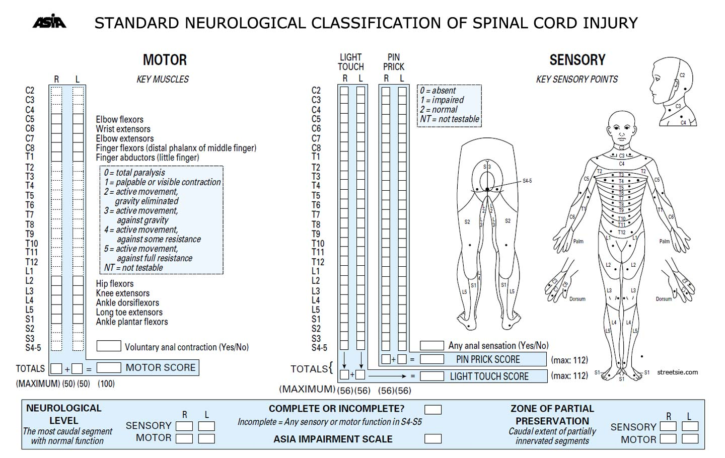 Spinal Cord Injury Classification